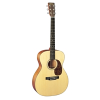 00016GT: 16 Series Auditorium Acoustic Guitar