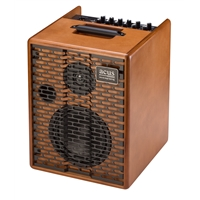 Acus One for Street Battery Powered Amplifier