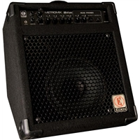 "EM25: 1x8"" Combo with 2 Instrument Inputs (25w)"