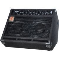 "EM275: 2x10"" Combo with 3 Instrument Inputs (150w)"